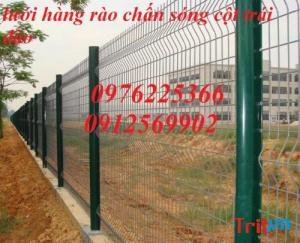 Sản xuất hàng rào lưới thép hàn mạ kẽm sơn tĩnh điện tại Hà Nội
