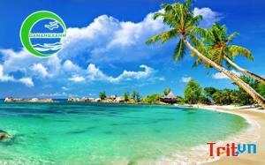 Tour Đà Nẵng Phú Quốc Quy Nhơn